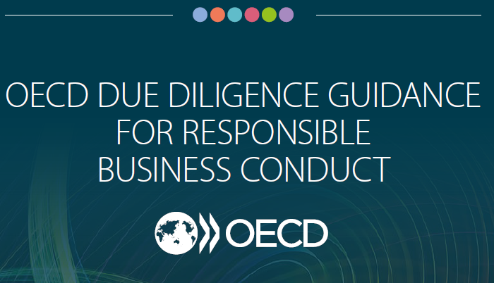 2018-OECD Due Diligence Guidance for RBC