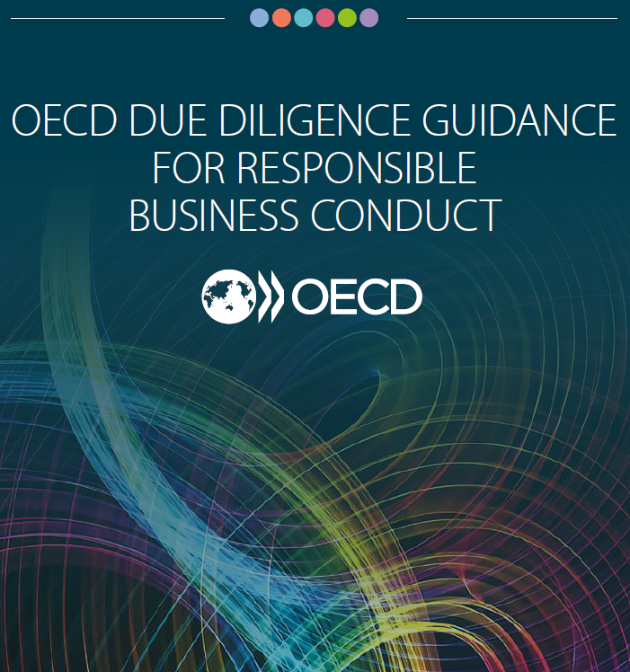 OECD Due Diligence Guidance for RBC